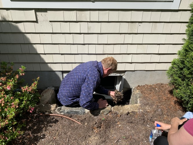 What's in a Professional Landscape Consultation & Why You Should Pay for One