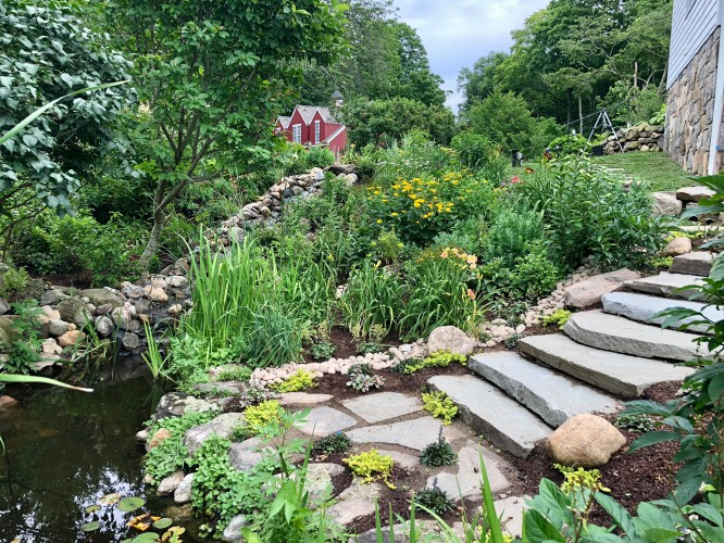 Stream Construction, Pond Restoration and Hillside Planting in New Canaan CT