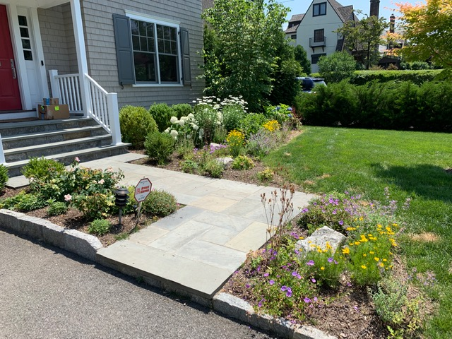 Front Entry Landscape Design & Renovation | Mamaroneck, NY